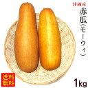 沖縄産 赤瓜 モーウィ 1kg /沖縄野菜 モウイ モーイ