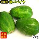 【送料無料】沖縄産 青パパイヤ 約2kg(2〜6玉)
