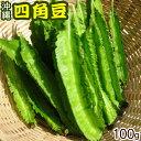 沖縄うりずん豆(四角豆)100g