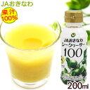 シークワーサー100 果汁100% 200ml / JAおきなわ 青切りシークワーサー ジュース 原液 ノビレチン