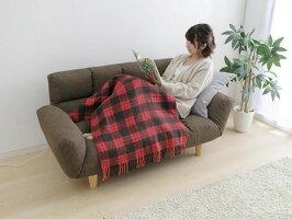アイリスオーヤマ/電気毛布ひざ掛け60×120cm/EBK-1206-ZR