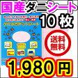 日本製 ダニ捕りシート 10枚組 送料無料 ダニシート ダニ退治 ダニ捕りマット