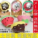 送料無料 犬猫兼用 エリザベスカラー 犬 ペット 犬のおもちゃ 犬おもちゃ 犬用のおもちゃ 犬用 犬のグッ...