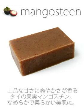 【SOAP-n-SCENT / ソープアンドセント】マンゴスチン ハンドメイドソープ 95g【ネコポス2点まで対応OK】【RCP】