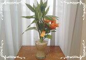 スパイラルグラスL サンゴ砂2種寄せ植え バンブー/サンデリアーナ/アーティフィシャルフラワーハイビスカス