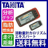TANITA(タニタ) カロリズムエキスパート AM140【送料無料|送料込|歩数計|活動量計|ダイエット|カロリー|健康器具|敬老の日|プレゼント】
