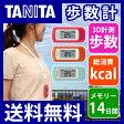 TANITA(タニタ) 活動量計(歩数計) カロリズム EZシリーズ EZ064/RD/OR/MT【送料無料|送料込|ダイエット|人気|おすすめ|散歩|ウォーキング|テレビで紹介|レビュー高評価|敬老の日|プレゼント|EZ061】