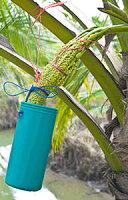 有機JASオーガニックココナッツシュガー350g1袋低GI食品低糖質糖質は白砂糖の3分の11000円ポッキリ!メール便送料無料Organiccoconutsugar