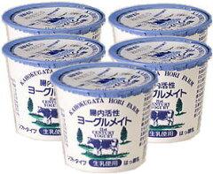 【要冷蔵】ホリ乳業腸内活性ヨーグルメイトソフトタイプ10個セット