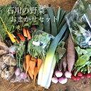 石川県 野菜セット 加賀・金沢・能登おまかせ野菜 Aセット(毎週木曜日発送)