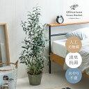 【クーポン配布中】 光触媒 観葉植物 オリーブ オリーブの木 106cm フェイクグリーン 光触媒人工植物 おしゃれ 造
