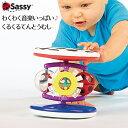 知育玩具 Sassy 音がいっぱい ファッシネーション ロー
