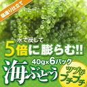 粒の大きさ、食感が違う!自然に近い育て方の無農薬栽培。グリーンキャビアとも言われる海藻だ...