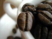 コーヒー スペシャル グランファザーズブレンド コロンビア ナリーニョ マイクロ