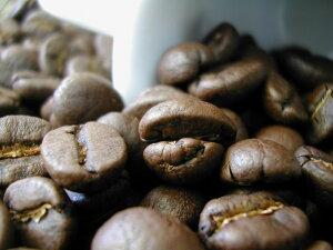 タンザニアAA++ンゴロンゴロ【キリマンジャロコーヒー】100gメール便なら400gまで【送料¥100】