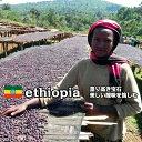 【エチオピア イルガチャフェ G−1 ナチュラル】コーヒー豆