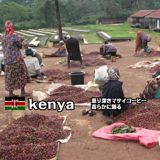 コーヒー豆 200g「ケニア マサイAA」コーヒー豆 自家焙煎 珈琲豆 レギュラーコーヒー 豆 焙煎豆 焙煎珈琲豆 自家焙煎コーヒー 深煎り 中挽き 細挽き 粗挽き 煎りたて 新鮮 コク 香り アイスコーヒー アイス ケニア