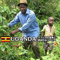 ウガンダ,ブギシュ,エルゴン,ティピカAA,まろやかな中煎り,コーヒー豆,自家焙煎,珈琲,豆,レギュラーコーヒー,焙煎豆,エスプレッソ,焙煎コーヒー豆,焙煎珈琲豆,自家焙煎コーヒー,お試し,おためし