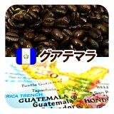 グアテマラ/ガテマラ 送料無料 柑橘系のシトラスフルーツの香りに豊かなコクとキレ グァテマラSHB 深煎り フレンチロースト 250g メール便 コーヒー豆 レギュラーコーヒー アラビカ豆 コヒー豆 ポイント消化 深煎りコーヒー豆 内祝い 敬老会 退職祝い お返し グルメお年始