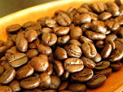 ホンジュラス500gコーヒー豆/ココアのような優しい風味 疲れた心と体を癒してくれる癒し系珈琲  ■ホンジュラスHG■中深煎り/