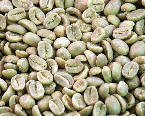 コーヒー, コーヒー豆 10 300g