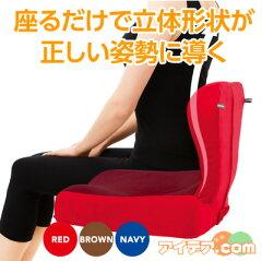 座るだけで美姿勢キープ!体にフィットして猫背を改善送料無料!3つのカーブで姿勢をシャキッ!...
