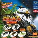 【送料無料】昆虫の森G 猛襲!スズメバチ軍団 全5種セット 【クリックポスト出荷】