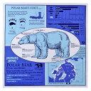 【サイエンス バンダナ ホッキョクグマ ホワイト 】動物 生物 クマ シロクマ 白熊 しろくま 白くま