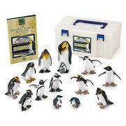 フィギュア ペンギン ボックス ラーペンギン・アデリーペンギン・ジェンツーペンギン
