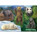 【動物 ミュージアム ジグソーパズル クマの仲間 B5サイズ/330ピース】生物 ゲーム 熊 パンダ