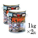 【送料無料】 サビキラーPRO [1kg×2缶セット] BAN-ZI