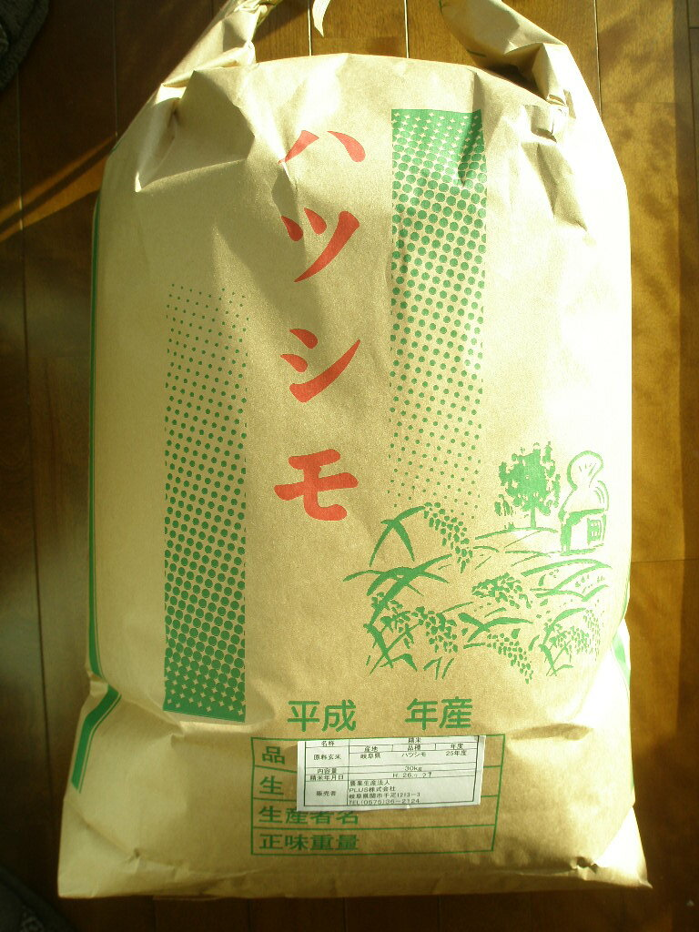 新米【30年度産】【生産者直売】 岐阜の米《代表品種》ハツシモ100% 玄米30kg 世界農業遺産認定地域(清流長良川上中流域)にて栽培しております。