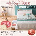 【送料無料】 収納ベッド シングル 棚付き コンセント付き Fleur...
