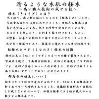 経木説明【佐藤経木】経木50号(5寸)(14.8cm×51cm)