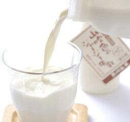 【高村武志牧場】山吹色のジャージー牛乳(200ml)×12本