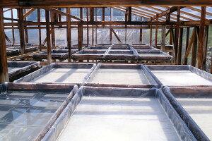 土佐の塩丸製造過程