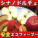 行列のできるリンゴ屋シリーズ!長野丸茂農園シナノドルチェ3kg(6?12玉)贈答用【りんご 長…