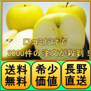 口コミだけで2000件の注文が入る 原田農園 噂のりんご!長野 りんご・長野 シナノゴールド・信...