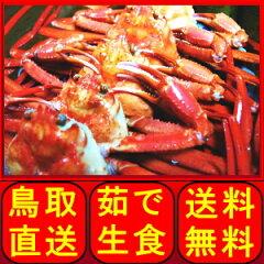 水揚げ当日に茹で上げ即日出荷します!未冷凍なので蟹本来の味と風味を楽しめます。甘みを感じ...