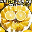 はっさく 10lg 送料無料 訳あり 八朔 和歌山 10kg...