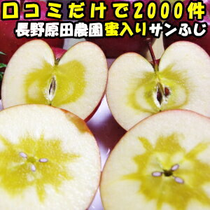フルーツ・果物, りんご  2000 15kg 3354