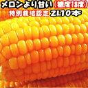 とうもろこし 北海道 甘い メロンより甘い 安心の特別栽培認定 生で食べれるとうもろこし 平均糖度18度 夢のコーン 2Lサイズ 10本入 北海道 三栄アグリ 送料無料・・・
