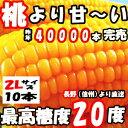 とうもろこし 県外不出 桃より甘い 生で食べれるとうもろこし めぐみ 長野産 2Lサイズ 10本 3.5〜4.5kg