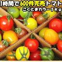 トマト フルーツトマト 高糖度 1時間で600件売れたフルーツ トマト ごくとま カラー 1kg バラ詰め 宮崎 わそう農園 直送 ななつ星in九州 採用実績あり