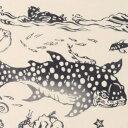 【4月15日までポイント10倍!】梨園染手ぬぐい うをのぞき 408【ネコポス可】手ぬぐい/てぬぐい/手拭い/和柄/観魚室/うおのぞき/水族館/鯨/クジラ/サメ/鮫/魚/イルカ/ペンギン