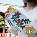 芸艸堂三つ折クリアファイル花シリーズ【楽ギフ_包装】