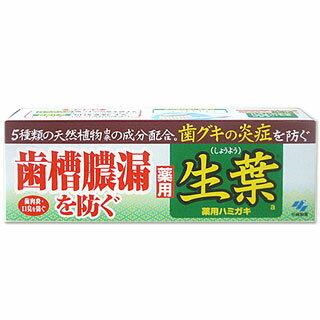 薬用 生葉 (薬用ハミガキ) 100g kobayashi