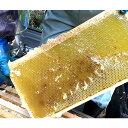 枝次養蜂園 おおいた森のはちみつ 味くらべボトルシリーズ 90g×3【送料無料】 2