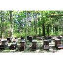 枝次養蜂園 おおいた森のはちみつ 味くらべボトルシリーズ 90g×3【送料無料】 3