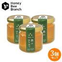 枝次養蜂園 おおいた森のはちみつ 味くらべボトルシリーズ 90g×3【送料無料】 1